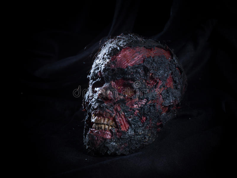 Burned skull royalty free stock images