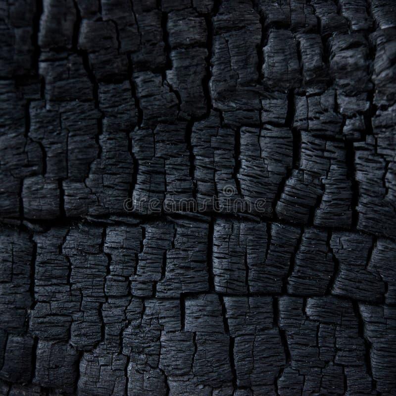 Burned Wood royalty free stock photography