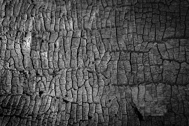 Burned wood texture. Close up black scratched wooden background. Details on the surface of charcoal royalty free stock photography
