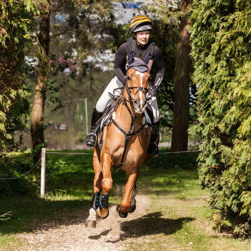 Burnham Market international horse trials 2017. BURNHAM MARKET, NORFOLK/ENGLAND - APRIL 13th 2017: Burnham Market International Horse Trials 2017 cross country stock image