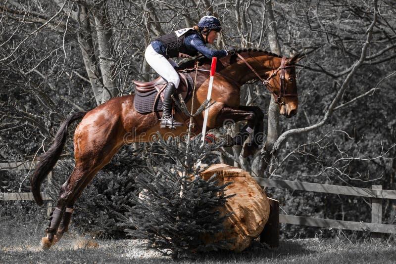 Burnham Market international horse trials 2017. BURNHAM MARKET, NORFOLK/ENGLAND - APRIL 13th 2017: Burnham Market International Horse Trials 2017 Jane Duncan royalty free stock photo