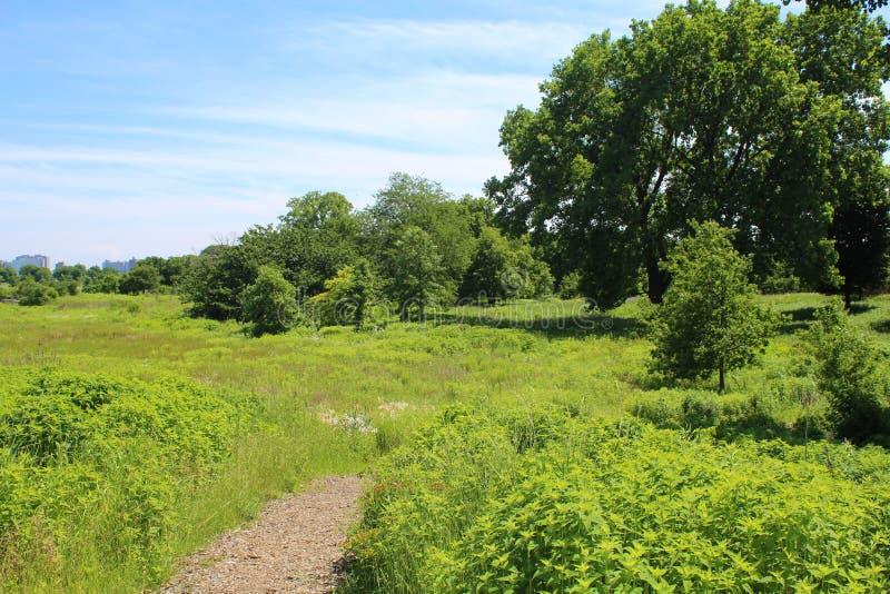 Burnham Wildlife Corridor som fotvandrar slingan i Chicago på den 31st gatan arkivfoton