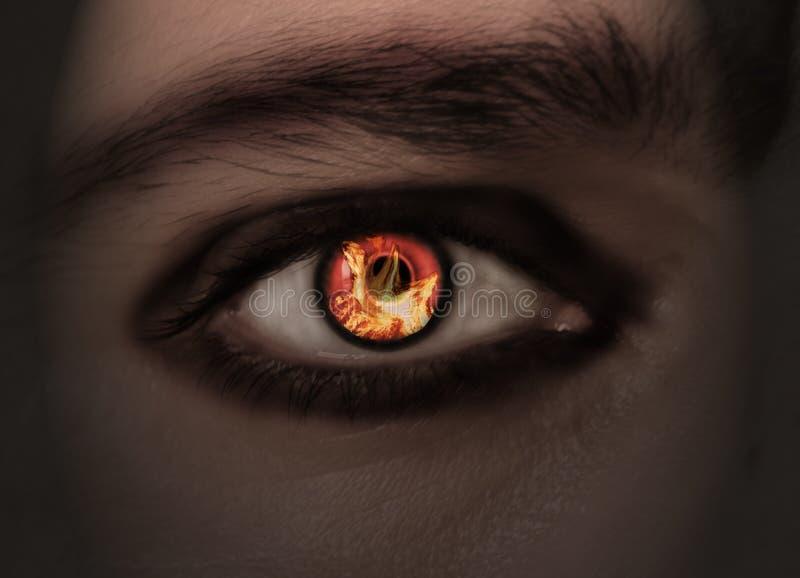 burning öga royaltyfria bilder