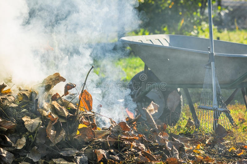 Burning autumn leaves in the sunny garden. Bonfire of the fallen leaves during autumn cleaning in the sunny garden royalty free stock photos