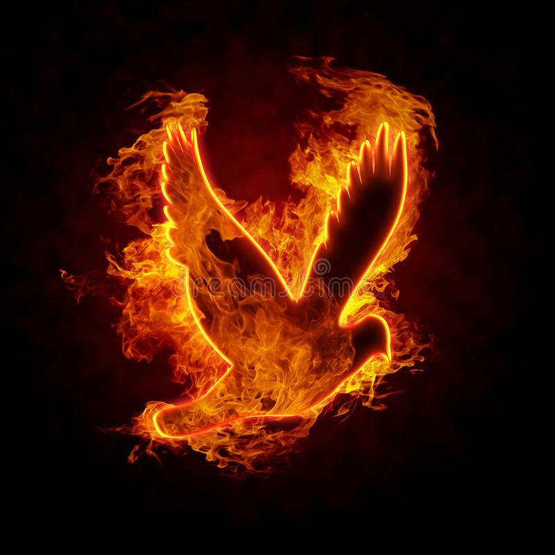 Burning Bird. Silhouette on black background stock photography