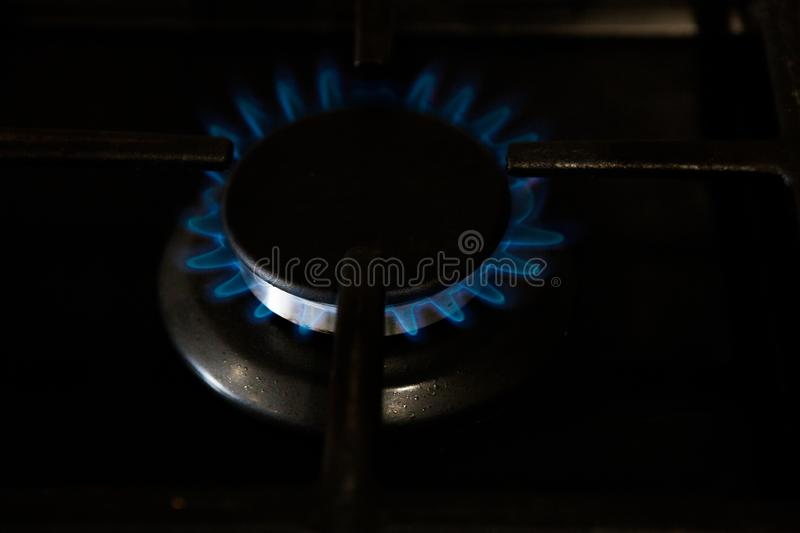 Burning blue gas on the dark stove. Burner gas stove, concept of energy. Closeup, selective focus stock photo