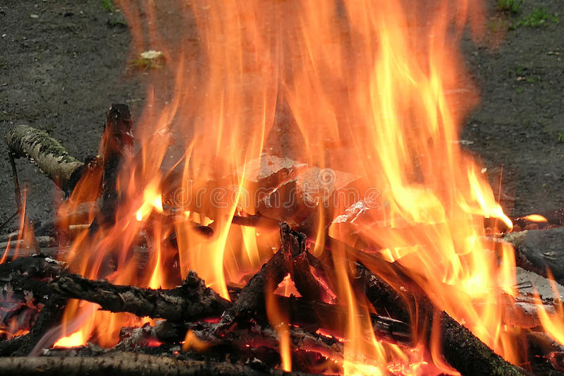 Burning bonfire and logs at night stock images