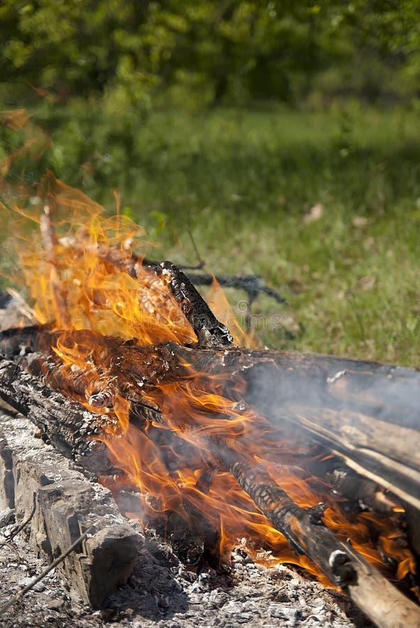 Burning bonfire and logs at night royalty free stock photos