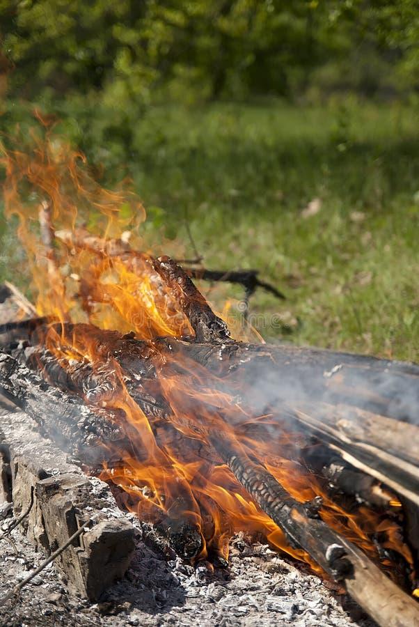 Burning bonfire and logs at night royalty free stock photo