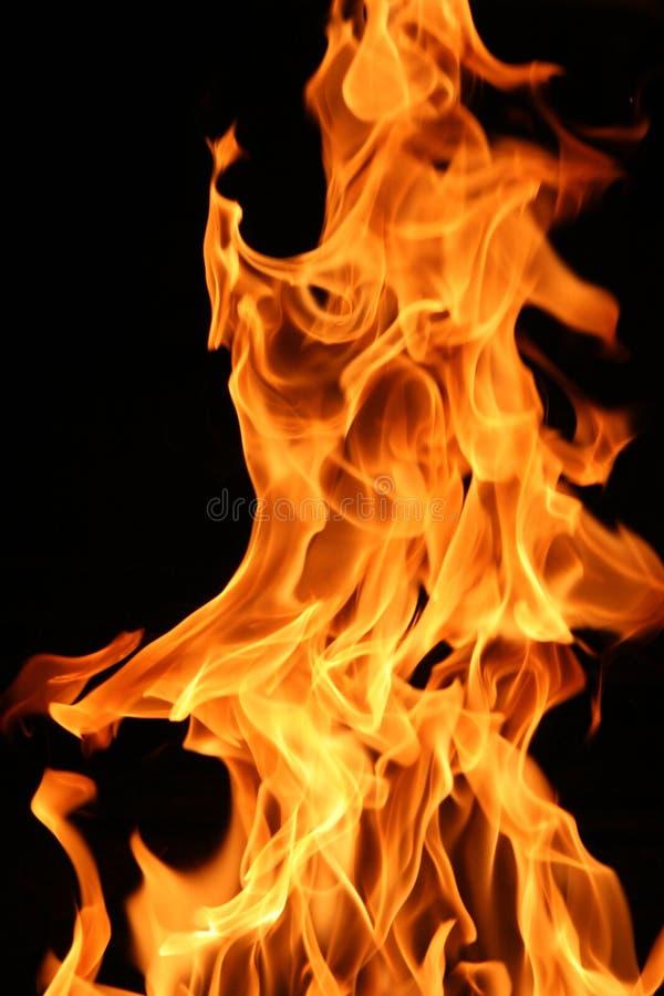 burning brand royaltyfri foto