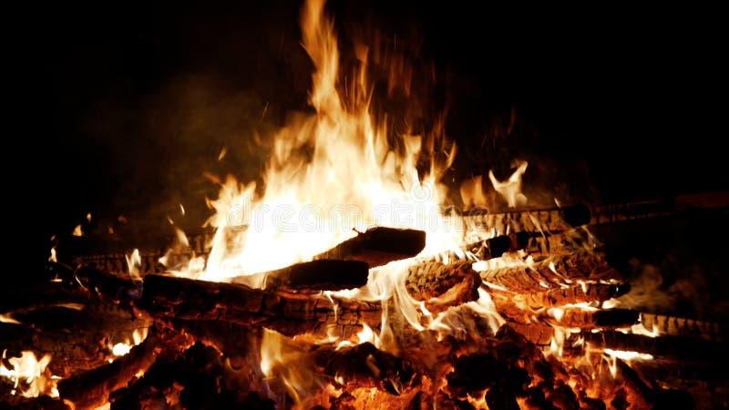 burning brand Brinna trä på natten Brinnande träd för brasa på natten Brasa som ljust bränner, värme, ljus som campar royaltyfri bild