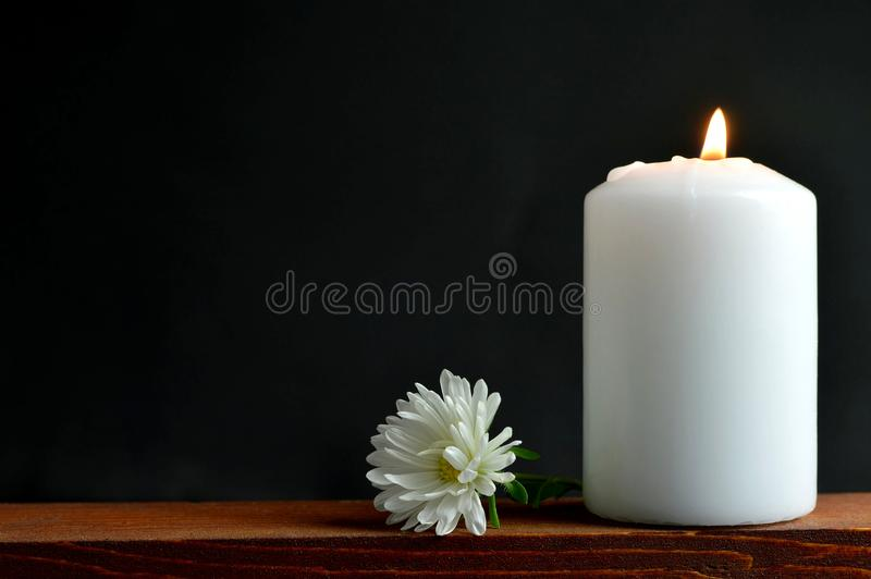 Burning candle and flower royalty free stock photography