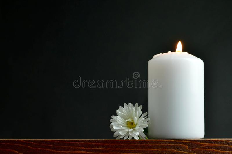 Burning candle and white flower stock photography