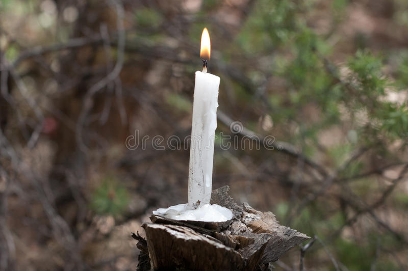 Burning candle on wood royalty free stock image