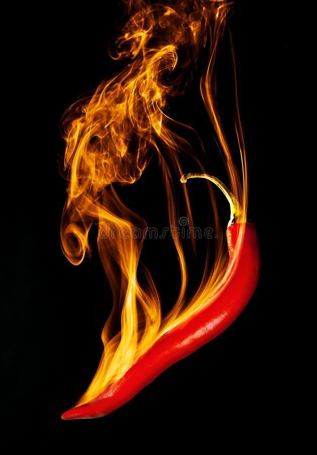 Burning Chili arkivfoton