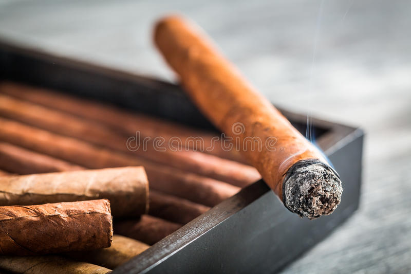 Burning cigar with smoke. On wooden humidor stock photos