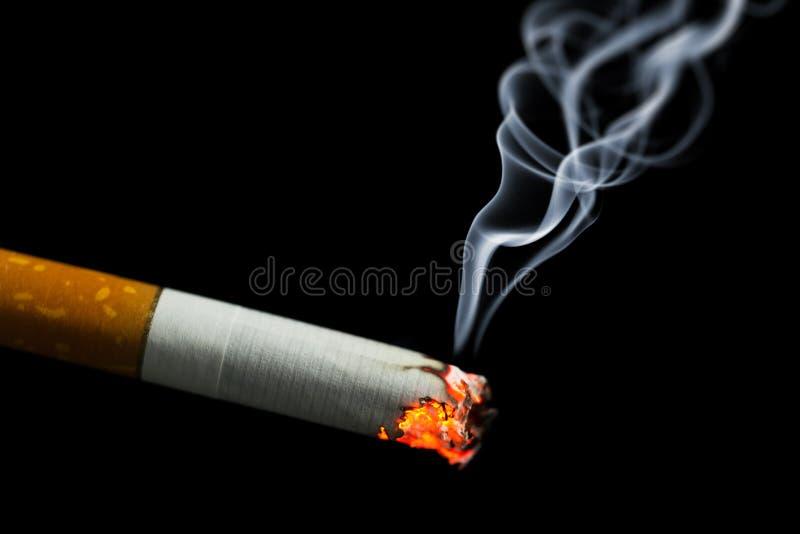 Burning cigarette with smoke stock image
