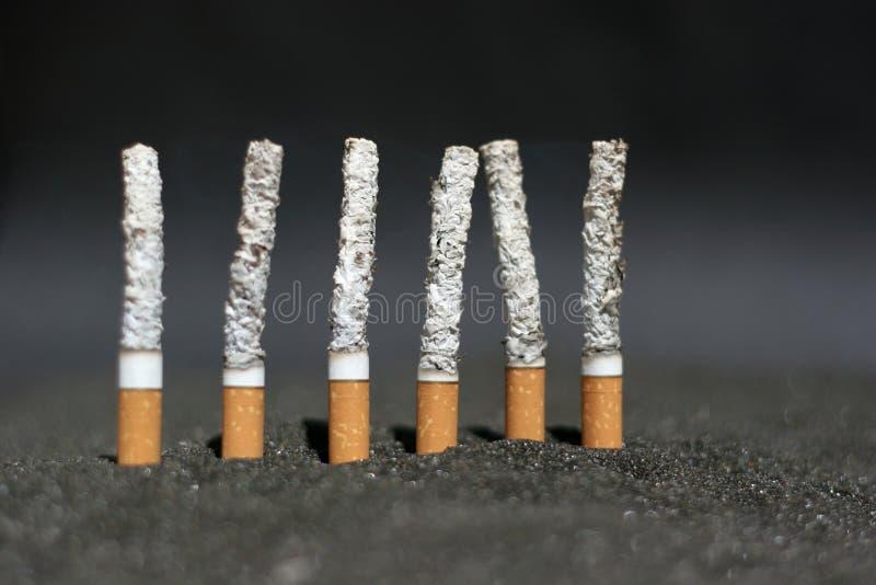 Burning cigarettes stock photo