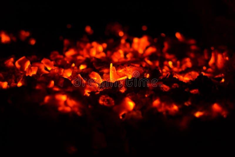 Burning coals royalty free stock images