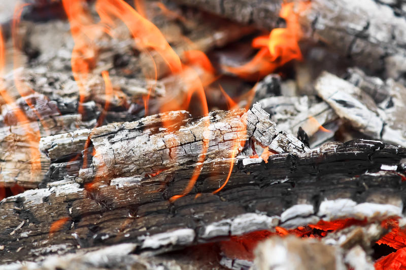 Burning coals with a white ash and red flames stock photography