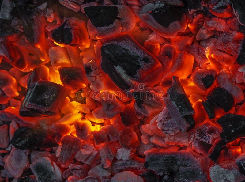 Burning da madeira e do carvão imagens de stock