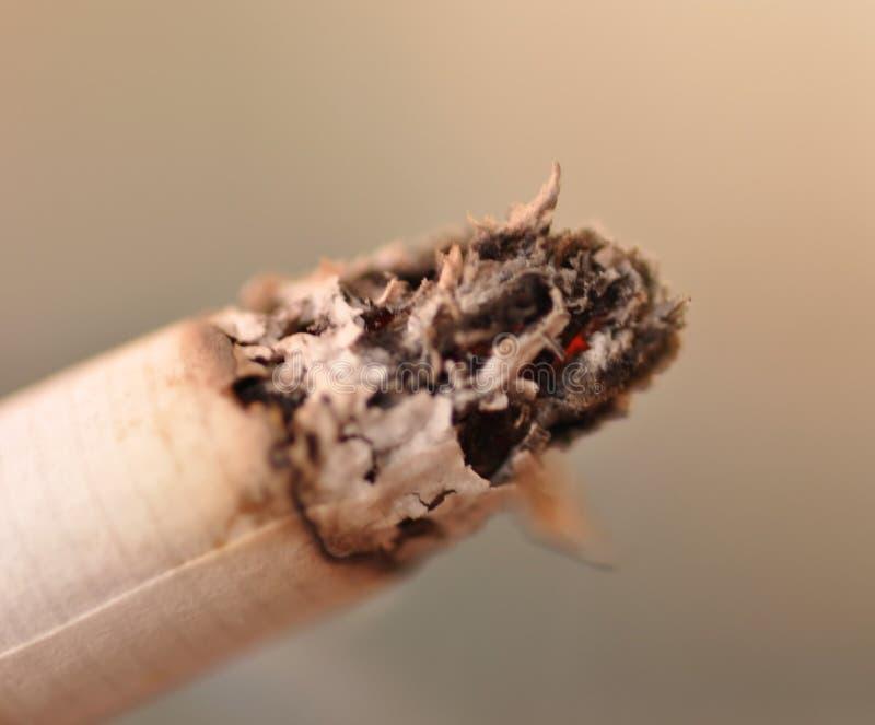 Burning de cigarette photo libre de droits