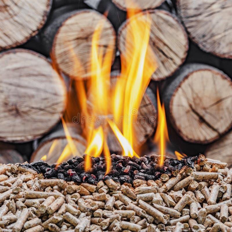 Burning de madera de la pelotilla imágenes de archivo libres de regalías