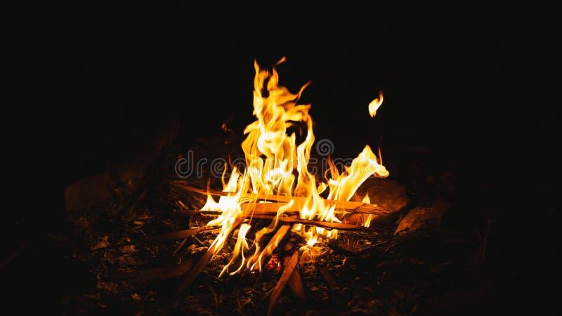 Burning do incêndio do acampamento foto de stock royalty free