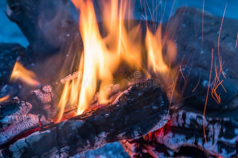Burning embers closeup. Burning campfire embers (hot coal royalty free stock photos