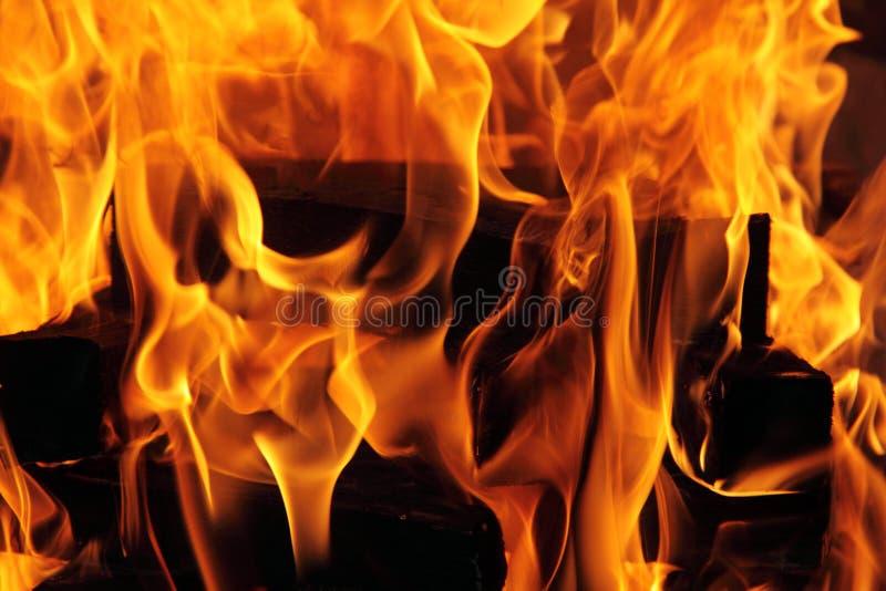 Burning fire stock photos