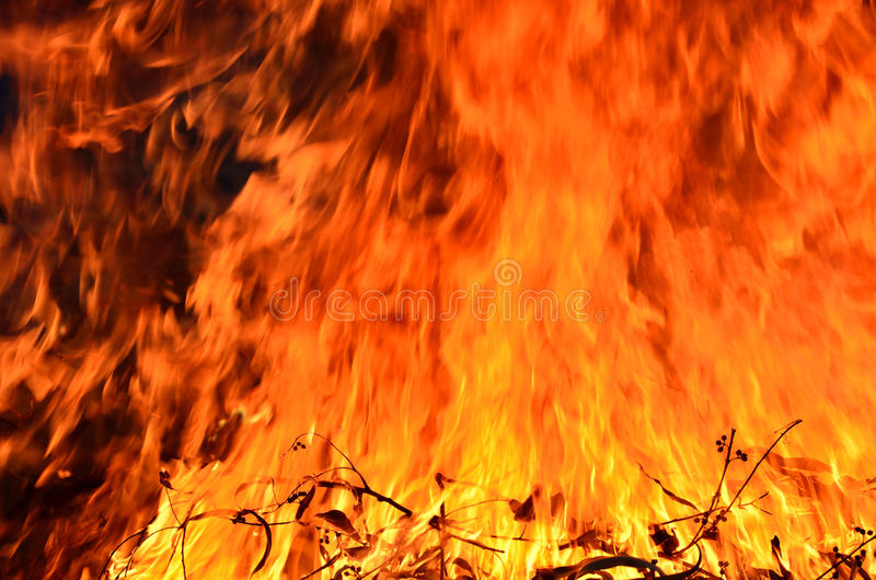 Download Burning fire stock image. Image of flammable, campfire - 31105679