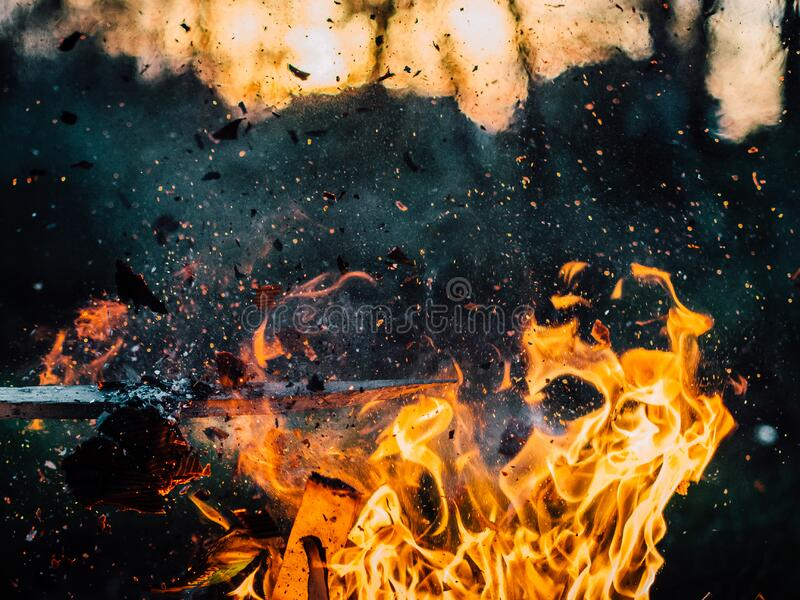 Burning fire with embers royalty free stock photography