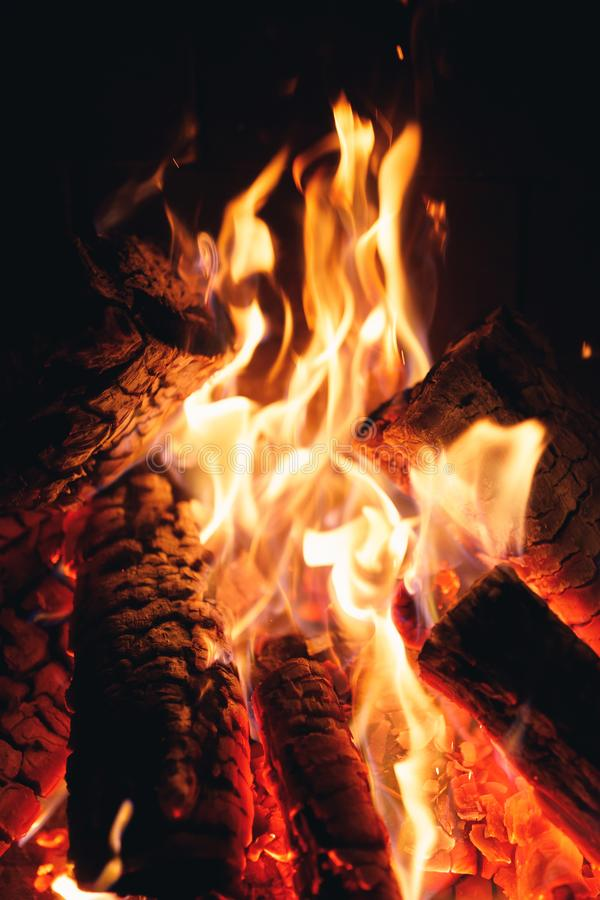 Burning fire logs in the fireplace stock photo