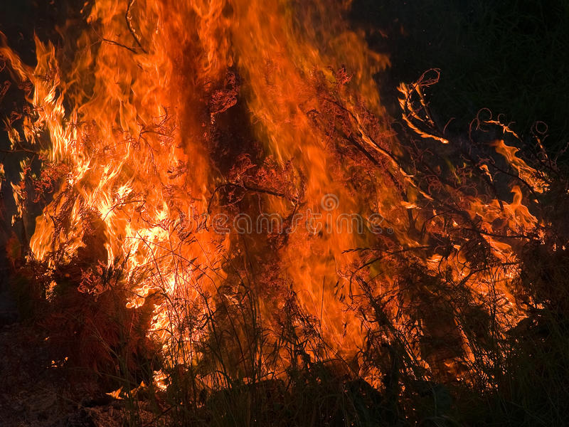 Download Burning flame fire inferno stock photo. Image of nature - 20717530