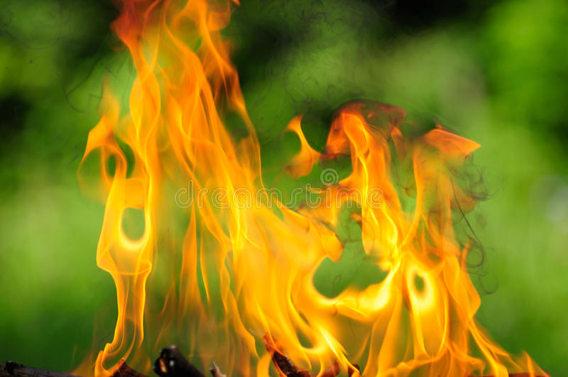 Download Burning Flames stock image. Image of charcoal, blazing - 25841681