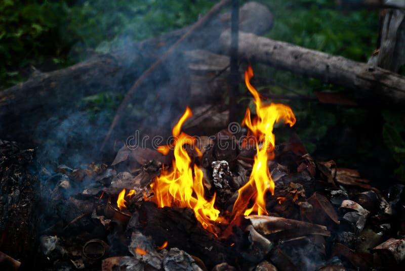 Download Burning garbage stock photo. Image of mountain, pollution - 11585524