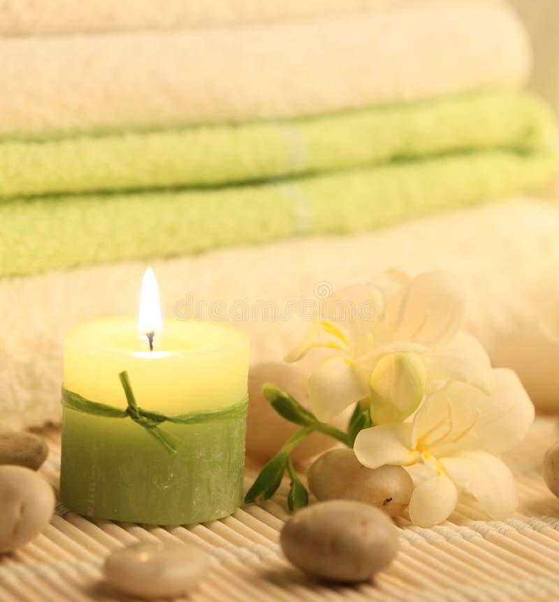 Download Burning green stock image. Image of leaf, nature, aromatherapy - 17347435