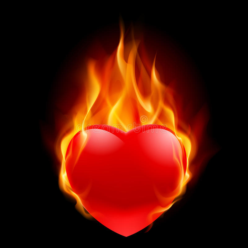 Burning Heart royalty free illustration