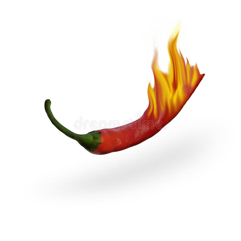 Burning Hot Chili Pepper stock photography