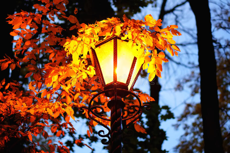 Burning lantern in autumn evening with golden leaves stock image