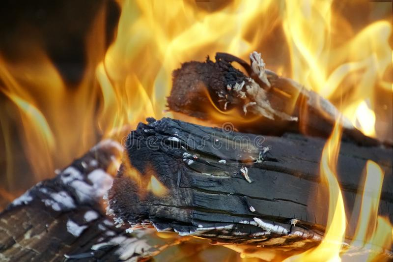 Burning logs in the oven. Flame and coal. Red orange glow blue hot royalty free stock photos