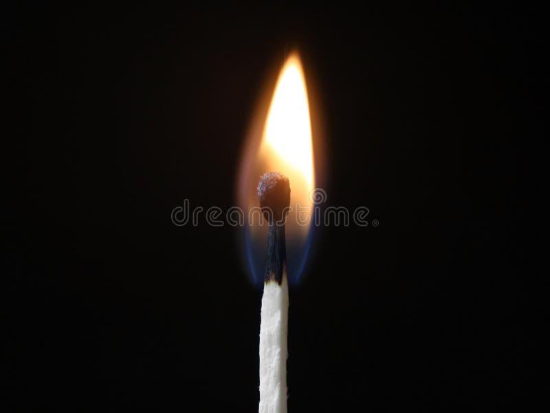 Download Burning match stock image. Image of wooden, match, burning - 29533783