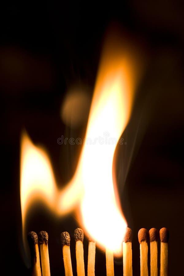 Burning Matches royalty free stock images