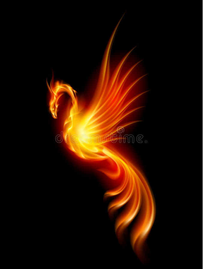 Burning phoenix royalty free illustration