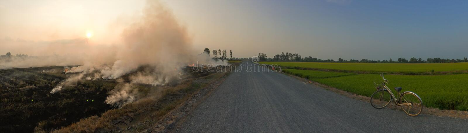 The burning of rice straw on the fields stock photos