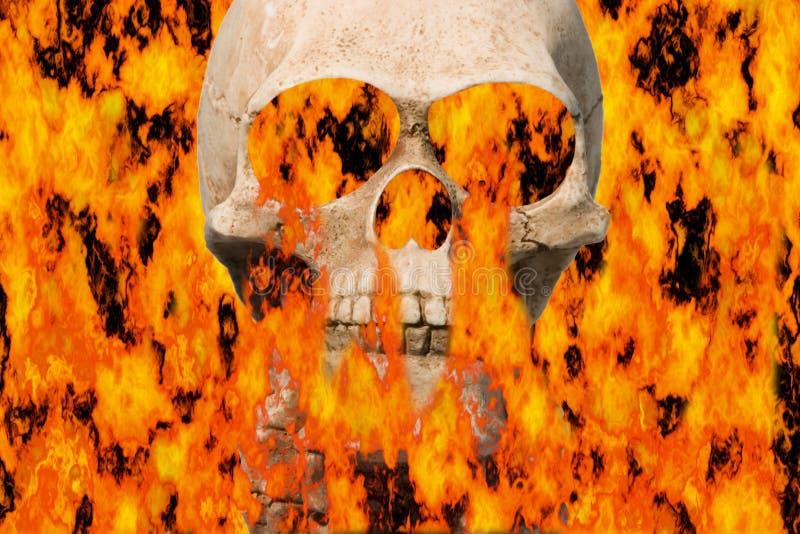 Burning skull vector illustration