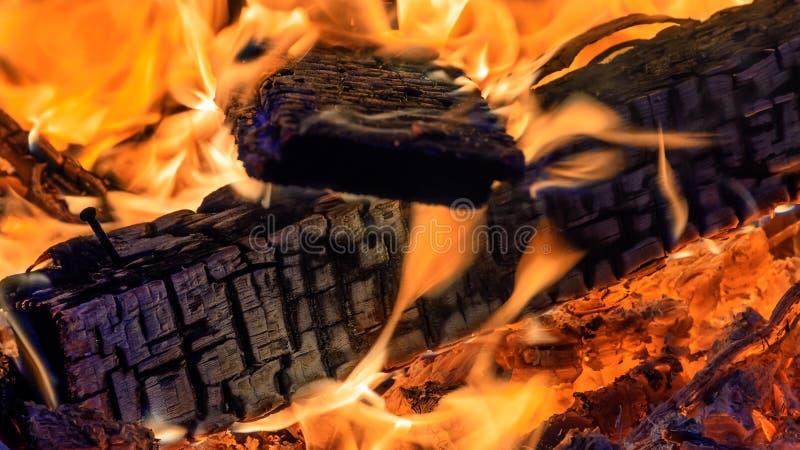burning spisträ arkivbild