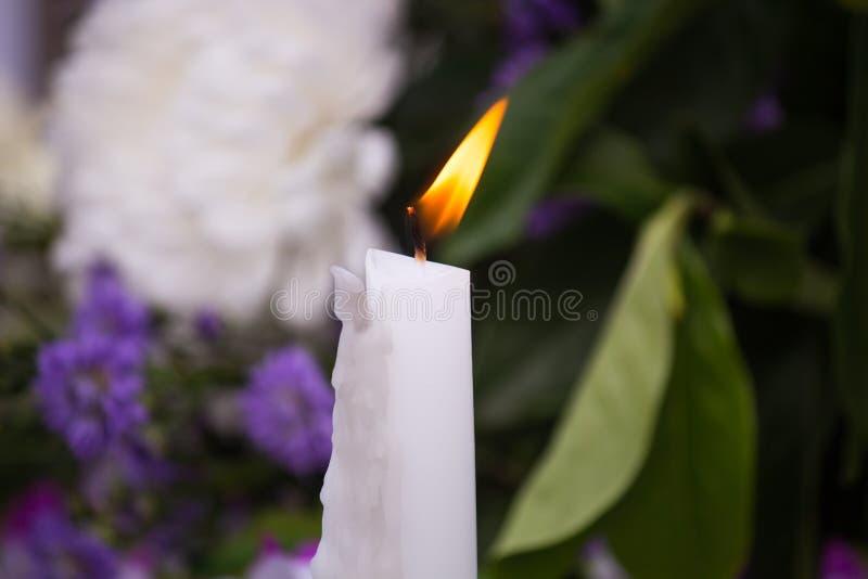 burning stearinljuswhite royaltyfri foto