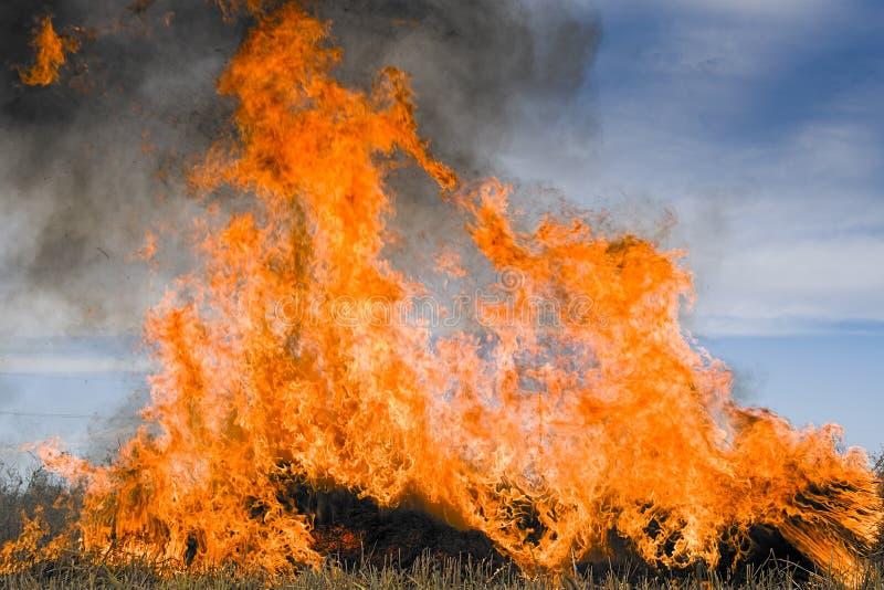 Burning straw royalty free stock photos