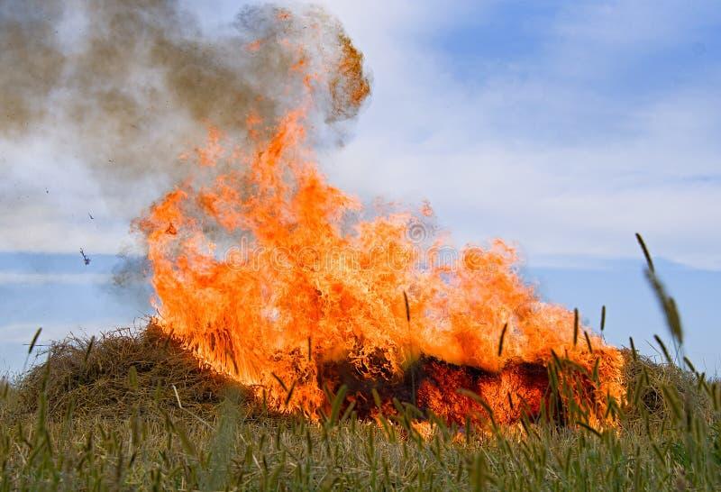 Burning straw stock photo